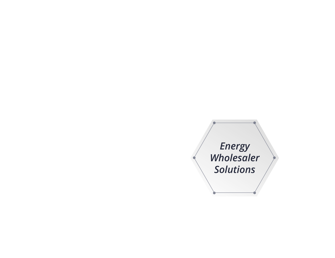 Energy Wholesaler Solutions